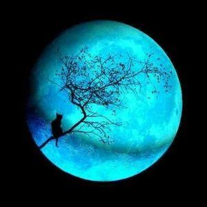 Moonshadow4