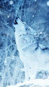 Wolf_Goddess