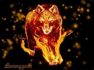 wolfbeast101