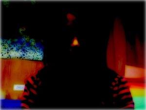 Shadow521