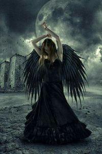 angel2407