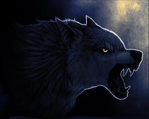thewolf234
