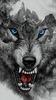 Wolfwing565