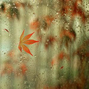 rain_walker