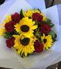 Sunflower_