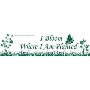 I Bloom