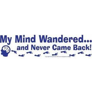 My Mind Wandered