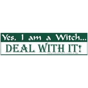 Yes I Am A Witch