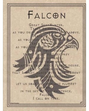 Falcon Prayer Poster