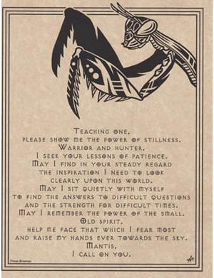 Mantis Prayer Poster