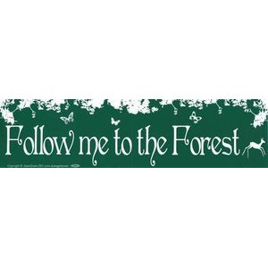 Follow Me To The Forest