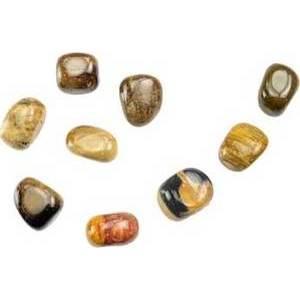 1 Lb Petrified Wood Tumbled Stones