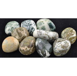 1 Lb Tree Agate Tumbled Stones