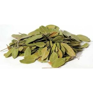 1 Lb Bearberry (Uva-Ursi) Whole