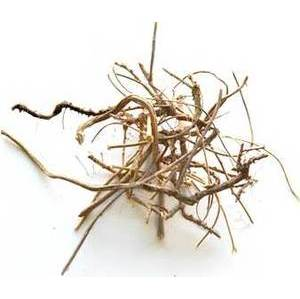 Devil's Shoestring Root 2oz