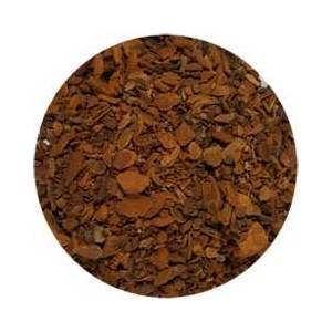 Sassafras Root cut 1oz (Sassafras albidium)