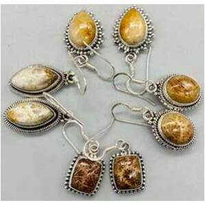 Fossil coral various earrings
