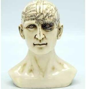 "6"" Phrenology Head"