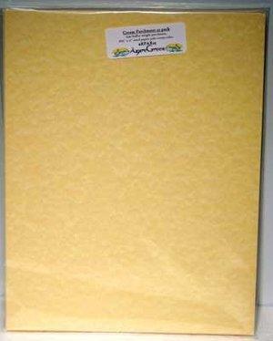Parchment: 25pk 8 1/2x11 (65#)