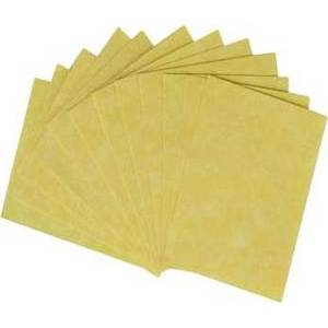 "12pk 3""X4"" Light Parchment"
