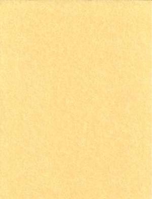 """500pk 24# 8 1/2""""X11"""" Parchment"""