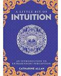 Little bit of Intuition (hc) by Catharine Allan
