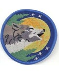 """Wolf Sew-On Patch 3"""""""