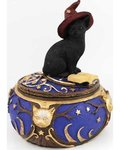Magical Cat Box 6""