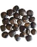 1 lb Stromatolite (onyx Brown) Tumbled Stones