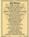 Rowan Poster